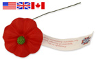 photo of memorial poppy and US,UK,CAN flags